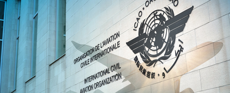 Screenshot of ICAO page.
