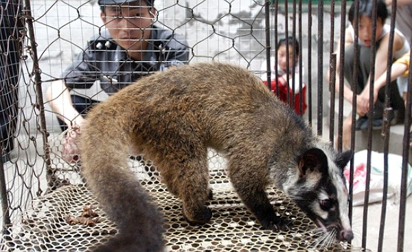 China has banned trade and consumption of all wild animals.