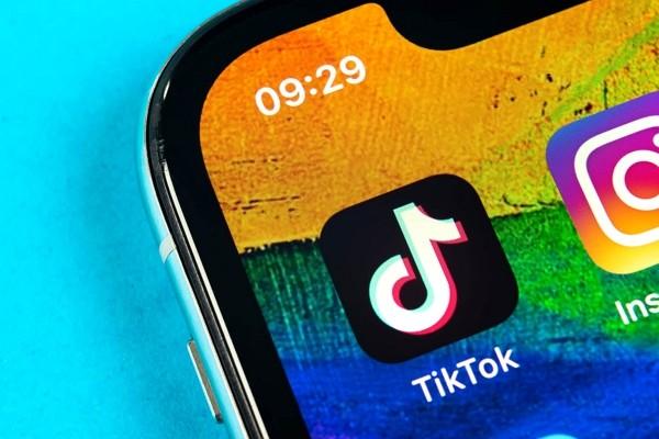 Reddit CEO says TikTok is 'fundamentally parasitic,' cites privacy concerns
