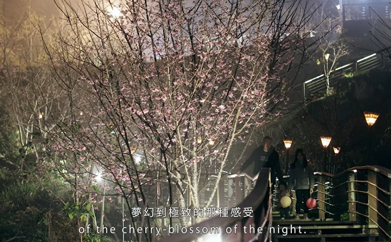 """""""A Night Tour in the Dream of Spring Cherry-Blossoms"""" screengrab"""