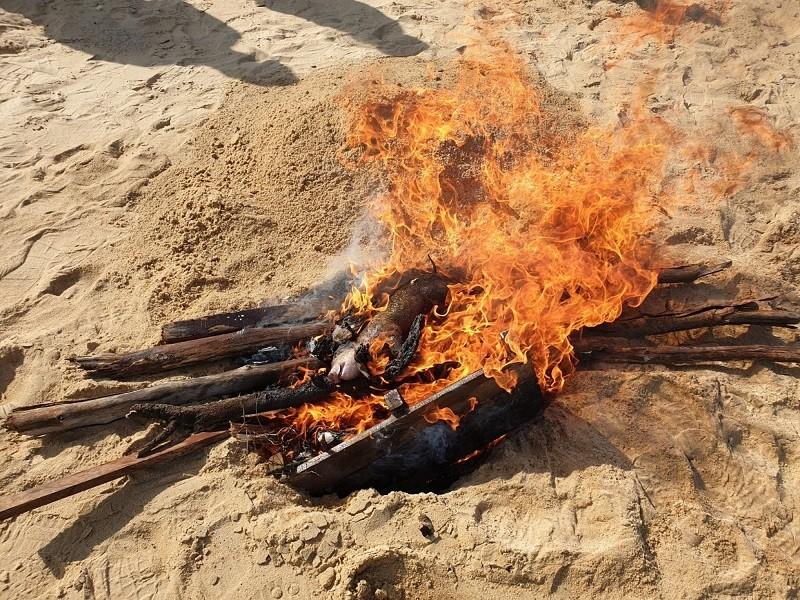 金門縣16日在烈嶼鄉青岐港海灘發現一頭海漂豬屍,防 疫所人員進行檢體採樣並消毒後,將豬屍就地焚燒掩埋 。(中央社)