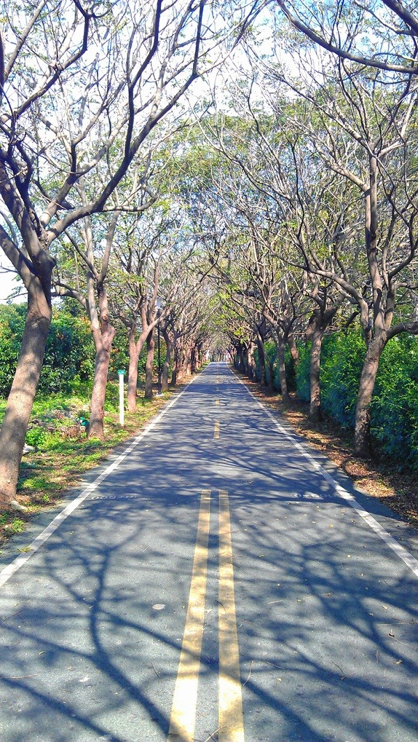 Nature and history collide on scenic central Taiwan bikeway