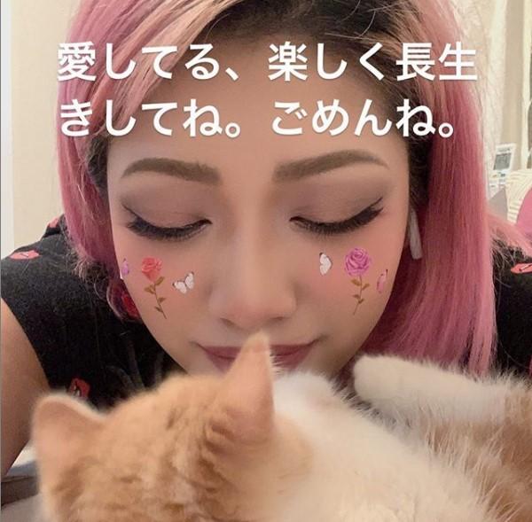 木村在23日凌晨在Instagram留下一張跟愛貓合照的照片,上面寫著「我愛你,要快樂地長久活下去,抱歉了」。(圖片取自木村花instag...