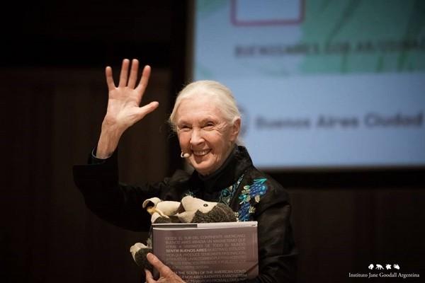Jane Goodall named winner of 2020 Tang Prize in sustainable development.