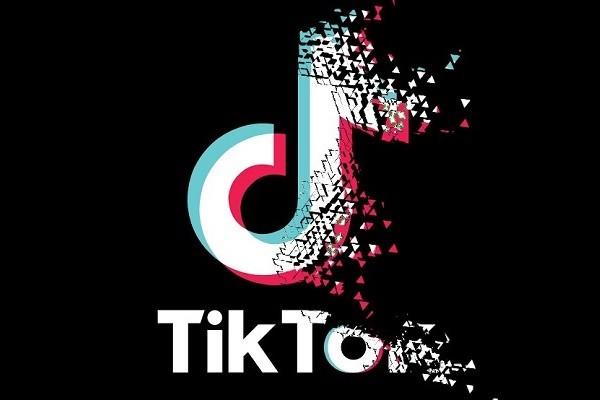 TikTok logo disintegrating. (Twitter,@Official_Arnab_meme photo)