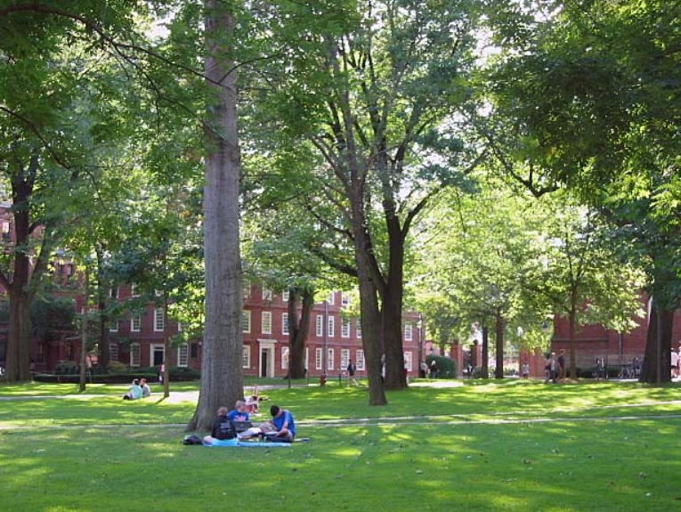 哈佛大學計畫採全線上遠端授課(圖/哈佛大學庭院_維基百科)