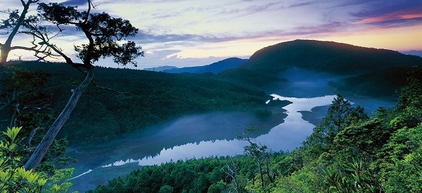 Taiwan Forestry Bureau to launch daily trips to five national forest recreation areas
