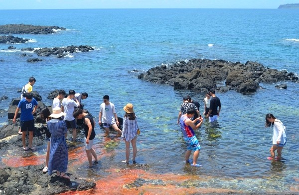 """Penghu County Government considers introducing """"travelling fee"""" to maintain the environment."""