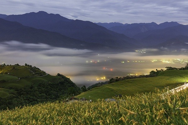"Daylily fields on Lioushihdan Mountain in Fuli Township, Hualien County (<a data-track=""attributionNameClick"" href=""https://www.flickr.com/photos..."