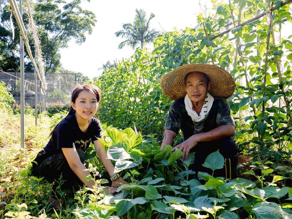 盧建和(右)和盧以甄(左)農忙照片。(新北市政府農業局提供)