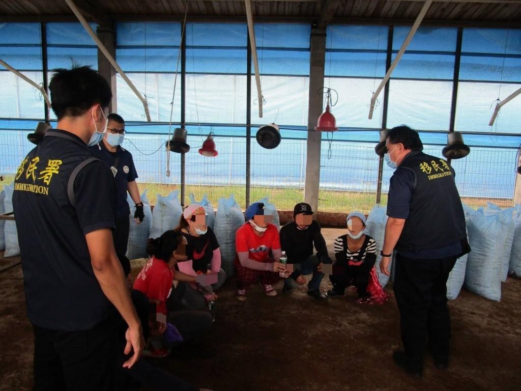 移民署嘉義縣專勤隊於養雞場查獲非法移工現場情形(圖/移民署提供)