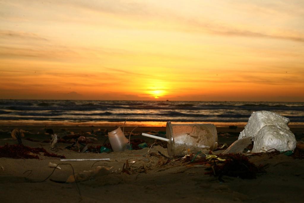 Plastic pollution on beach (Pixabay photo)