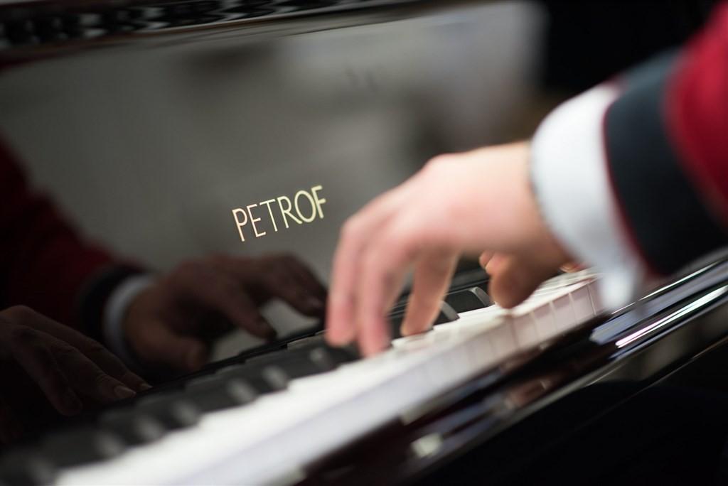 佩卓夫鋼琴(圖片翻攝自官網)