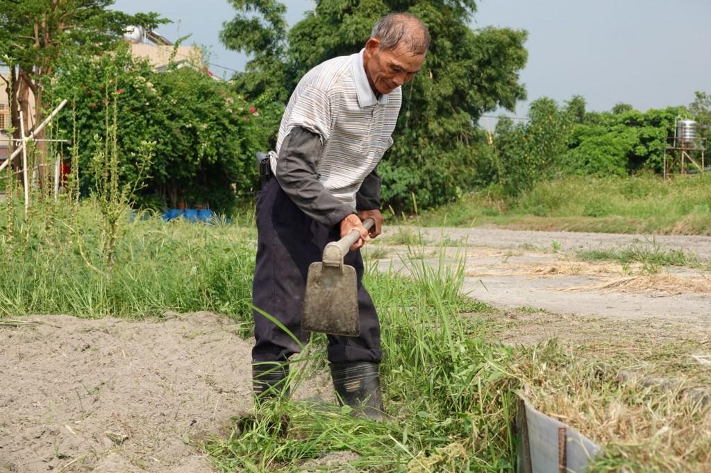 照片來源:新北市政府農業局提供