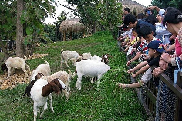 Shou Shan Zoo in Kaohsiung. (Tourism Bureau photo)