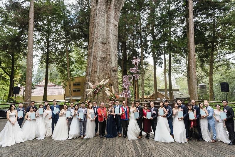圖為第14屆「阿里山神木下婚禮」 (www.taiwan.net.tw/)