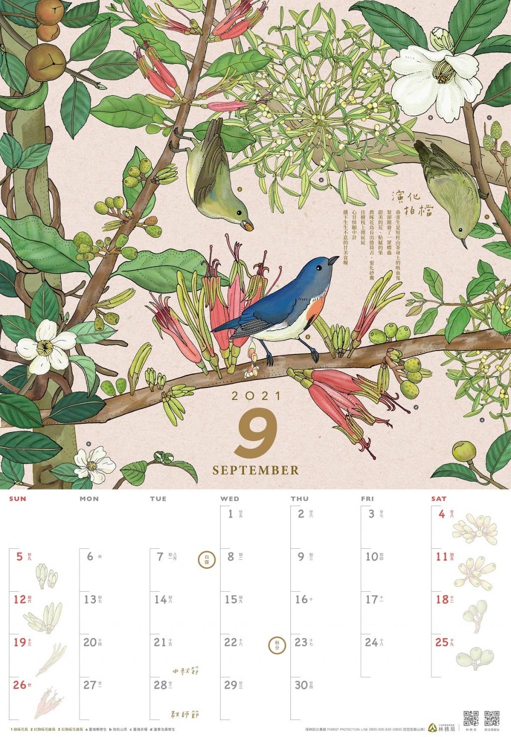 對台灣森林友善 林務局2021年月曆搶先曝光下月開放預購