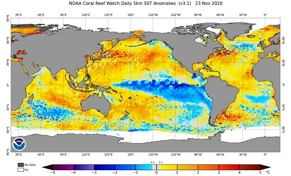 NOAA map showing lower sea surface temperatures in Pacific associated withLa Niña on Nov. 23, 2020.