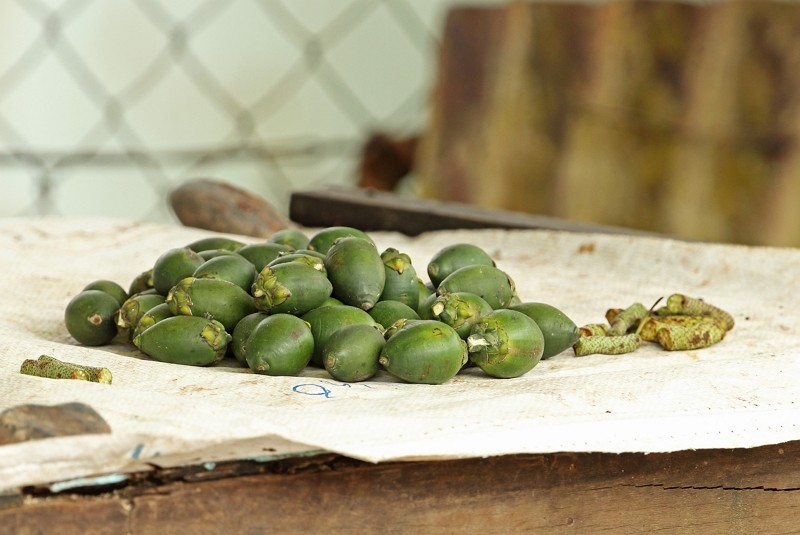 Betel nuts (Getty Images)