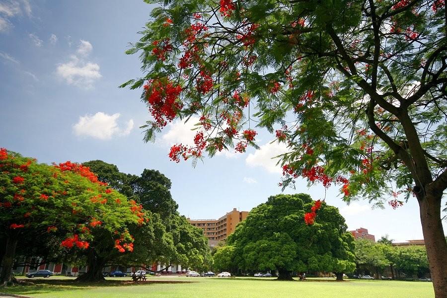 National Cheng Kung University campus. (NCKU photo)