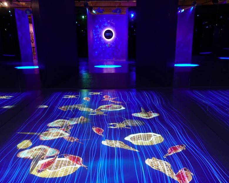 「故宮數位印象展」即日起至明年3月7日台中市港區藝術中心展出(圖/故宮)