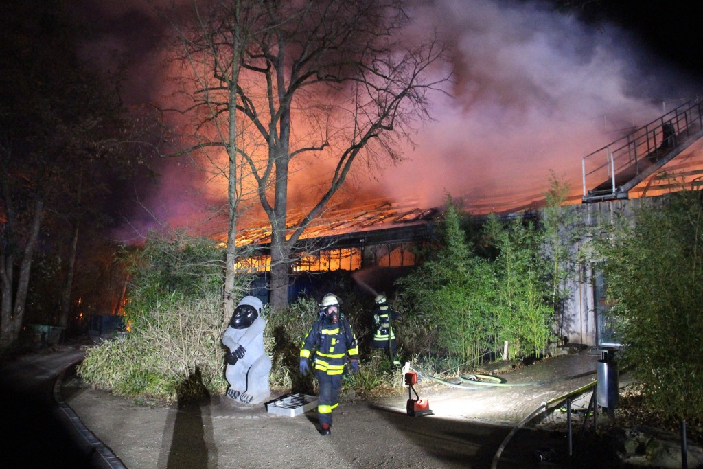 Firefighters stand in front of the burning monkey house at Krefeld Zoo, in Krefeld, Germnay, Wednesday Jan 1, 2020. A fire at a zoo in western Germany...