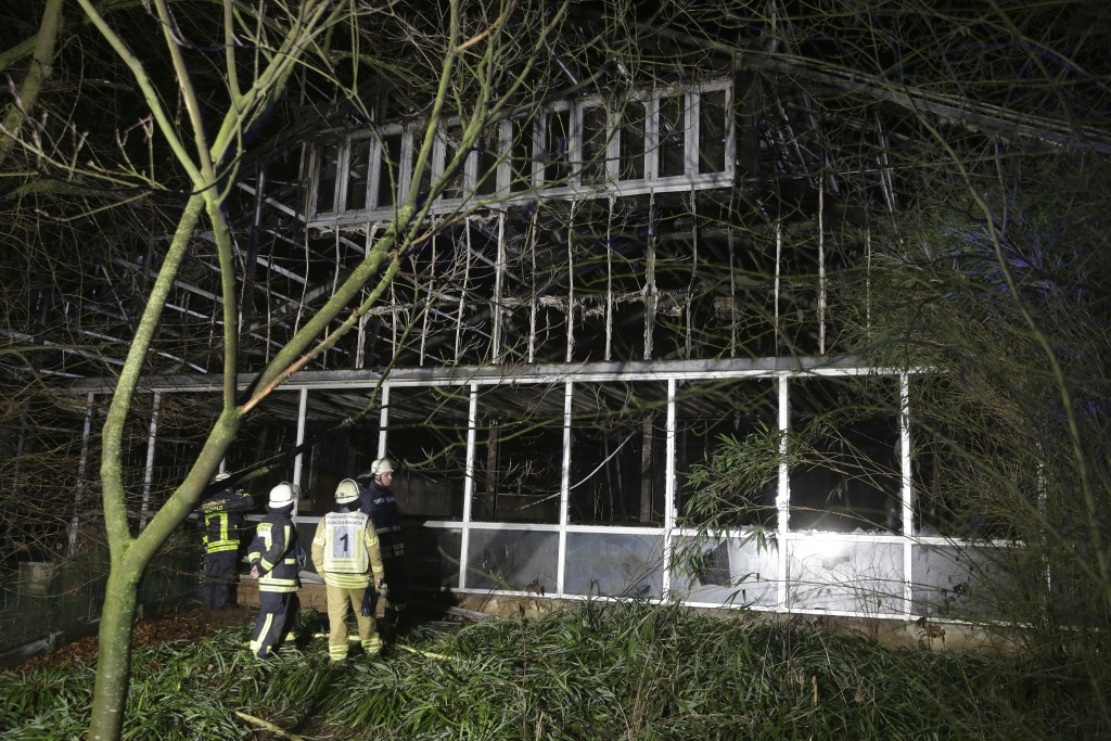 Firefighters stand in front of a burnt out animal house at the Krefeld Zoo in Krefeld, Germany, early Wednesday, Jan. 1, 2020. A large number of anima...