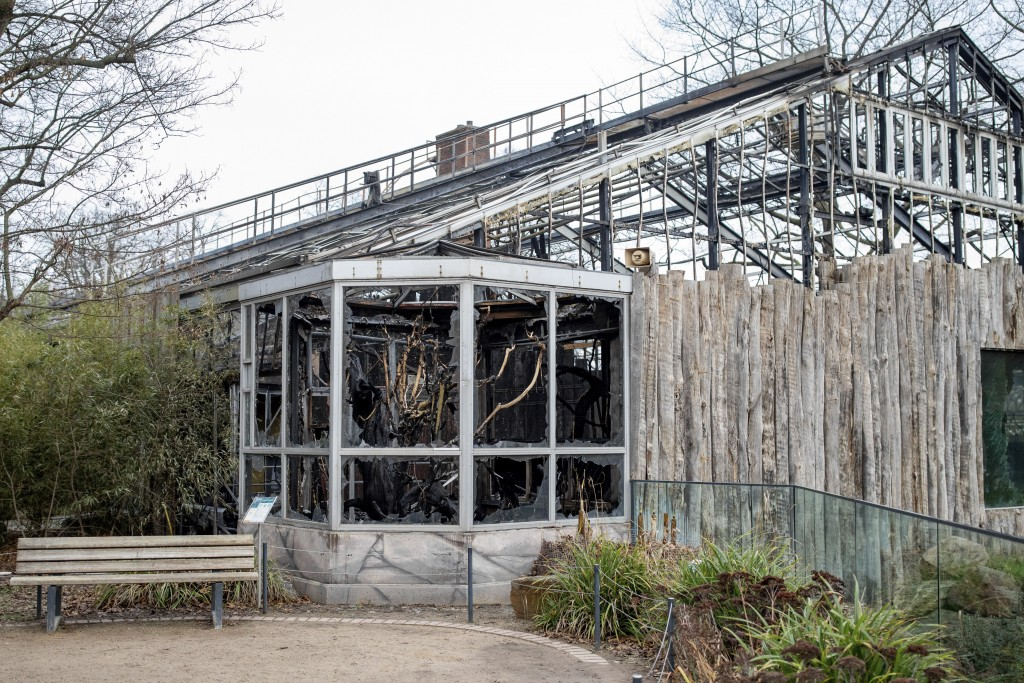 Exterior view of the destroyed ape house of the Zoo in Krefeld, Germany, Thursday, Jan. 2, 2020. Three woman are under investigation for launching pap...