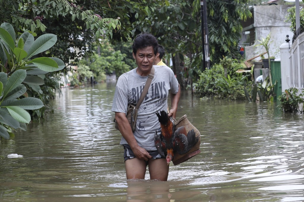An Indonesian man carries his rooster through a flooded neighborhood in Tanggerang on the outskirts of Jakarta, Indonesia, Thursday, Jan. 2, 2020. Sev...