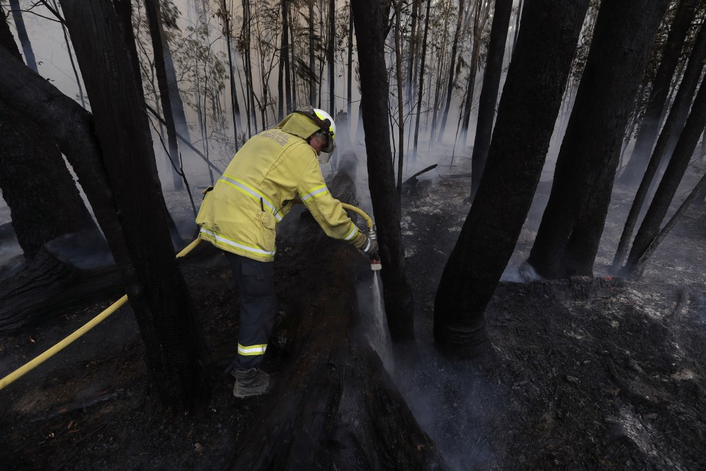 A firefighter manages a controlled burn near Tomerong, Australia, Wednesday, Jan. 8, 2020, in an effort to contain a larger fire nearby. Around 2,300 ...