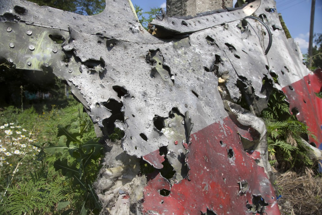 FILE - In this Wednesday, July 23, 2014 file photo, a piece of the crashed Malaysia Airlines Flight 17 lies in the village of Petropavlivka, Donetsk r...