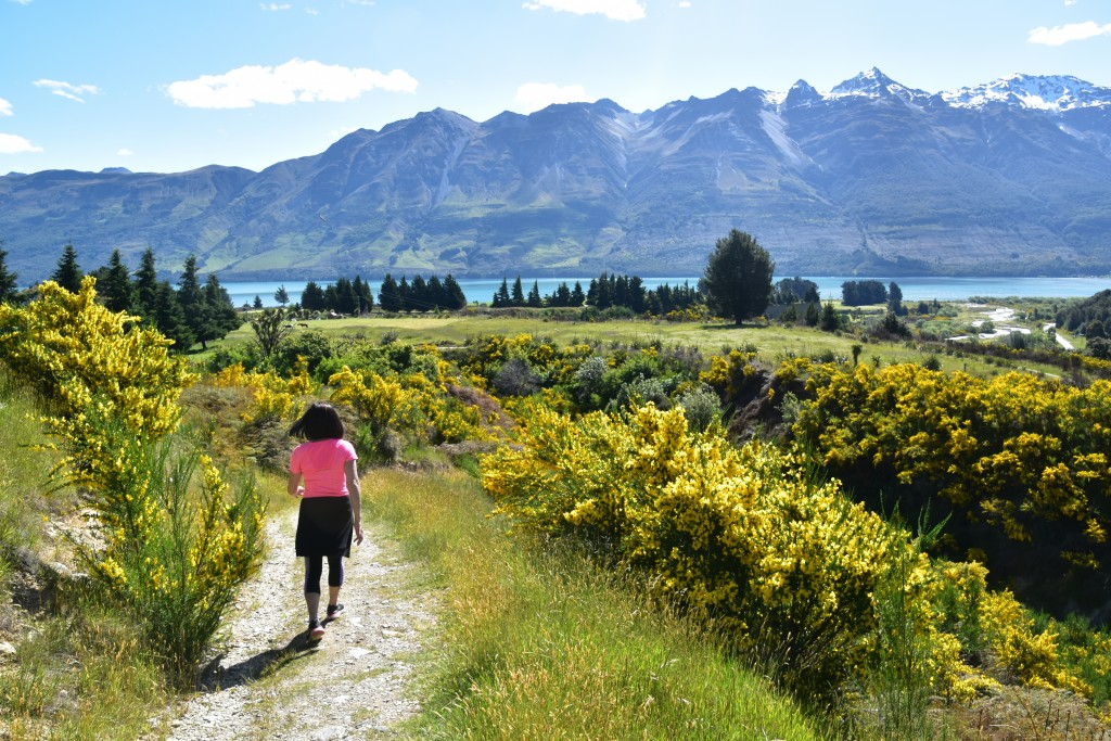 This Dec. 23, 2019, photo shows a hiker descending from Mt. Judah on a trail lined with yellow wildflowers near the town of Glenorchy, New Zealand.  (...
