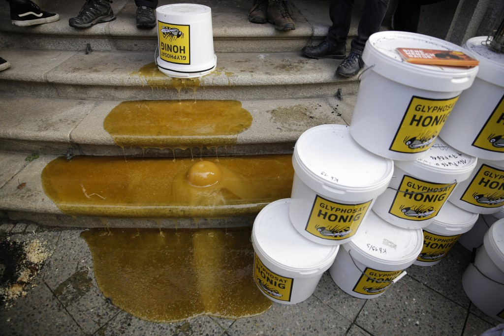 The steps of the German agriculture ministry are poured with contaminated honey during a demonstration of beekeepers against the use of Glyphosate-bas...