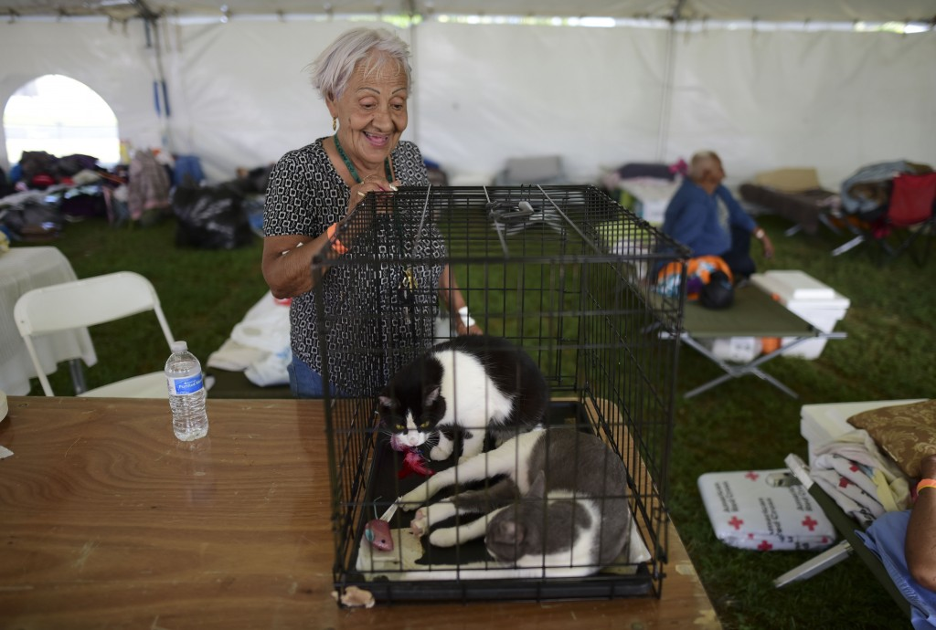 Ana Padro, a resident of Guanica, talks to her two cats staying with her in a tent city housing hundreds of people displaced by earthquakes in Guanica...