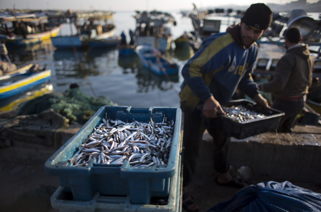 FILE - In this April 3, 2019, file photo, Palestinian fishermen unload their catch after a night fishing trip, in the Gaza Seaport. (AP Photo/Khalil H...