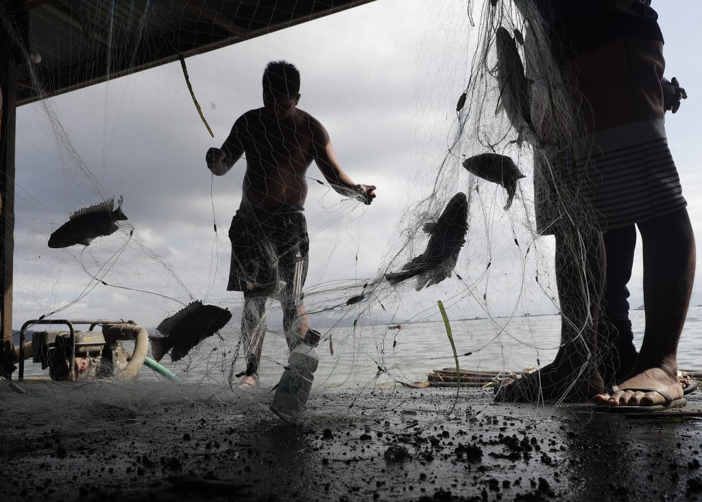 Fishermen gather their catch for the day at the lake beside Taal volcano where residents in the area have evacuated to safer ground in Agoncillo, Bata...