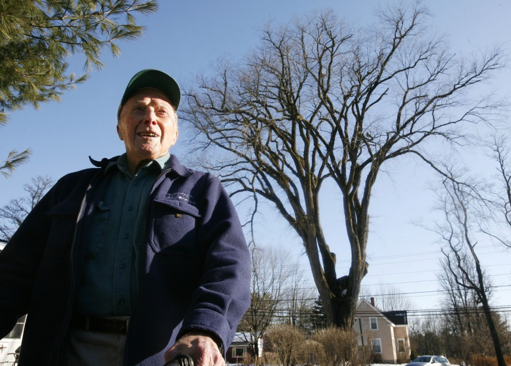 """FILE - In this Dec. 14, 2009 file photo, Frank Knight, 101, of Yarmouth, Maine, stands in front of an elm tree known as """"Herbie"""" in Yarmouth. Knight t..."""