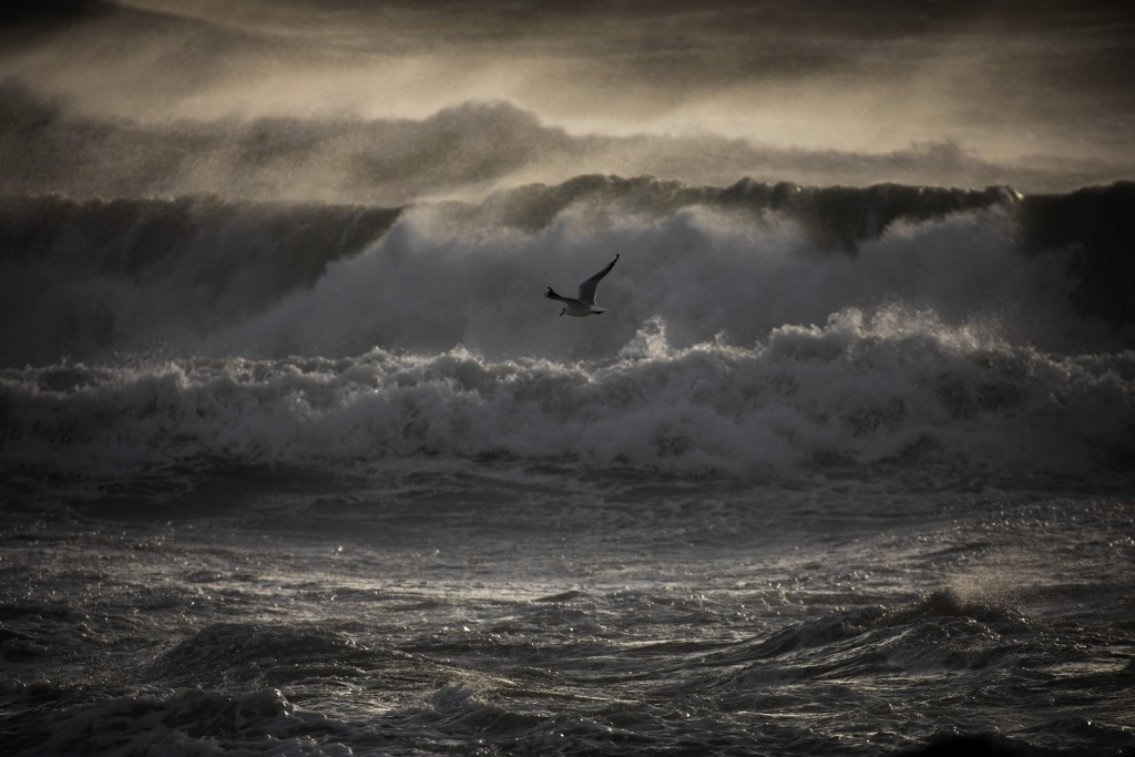 A gull overflies the Mediterranean sea during strong winds in Barcelona, Spain, Monday, Jan. 20, 2020. Two people have died as storms carrying heavy s...