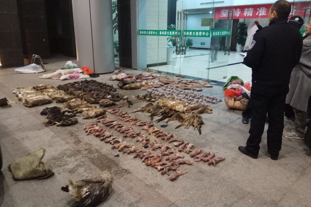 Outbreak of Wuhan virus prompting renewed calls for enforcement of laws against the trade in and consumption of exotic species.