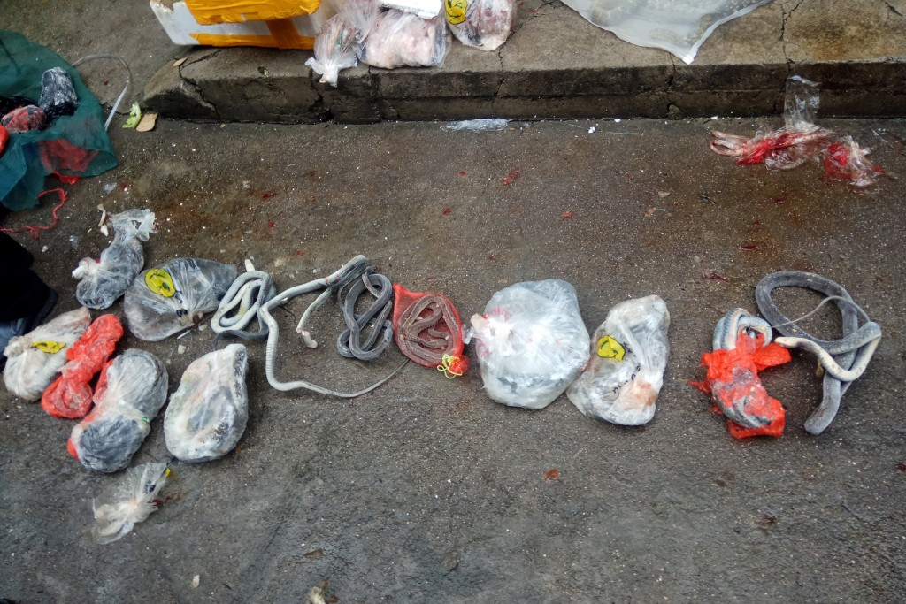 In this Jan. 17, 2020, photo provided by the Anti-Poaching Special Squad, snakes and other items seized from a store suspected of selling trafficked w...