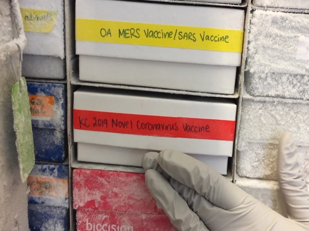 In this undated frame from video provided by the National Institute of Allergy and Infectious Diseases (NIAID), a scientist returns a novel coronaviru...