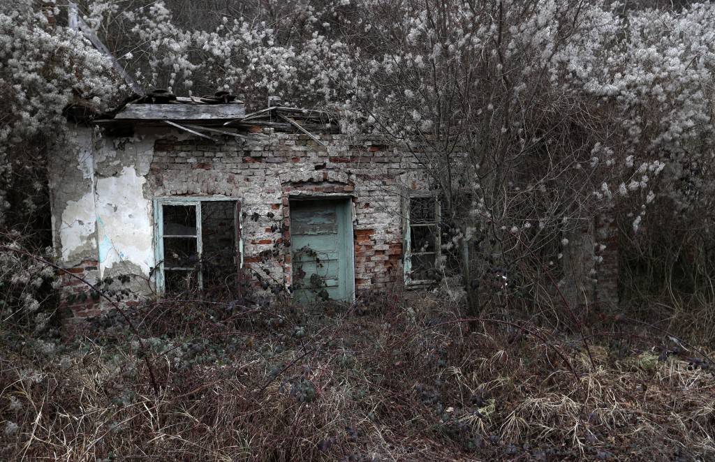 In this photo taken on Thursday, Jan. 23, 2020,  an abandoned house is seen in the village of Blagojev Kamen, Serbia. Near-empty villages with abandon...