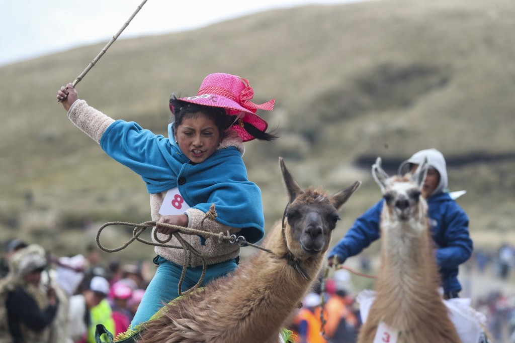 Milena Jami whips her llama to win the first place in the a race for children of ages seven and eight at the Llanganates National Park, Ecuador, Satur...