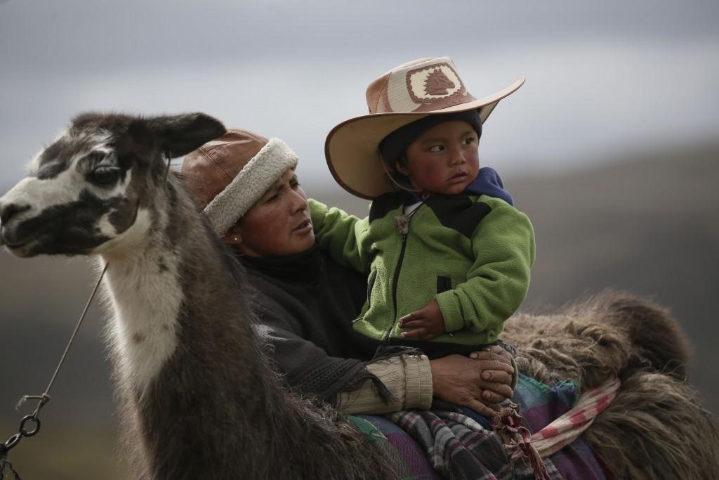 A woman embraces her son during Llama races at the Llanganates National Park, Ecuador, Saturday, Feb. 8, 2020. Wooly llamas, an animal emblematic of t...