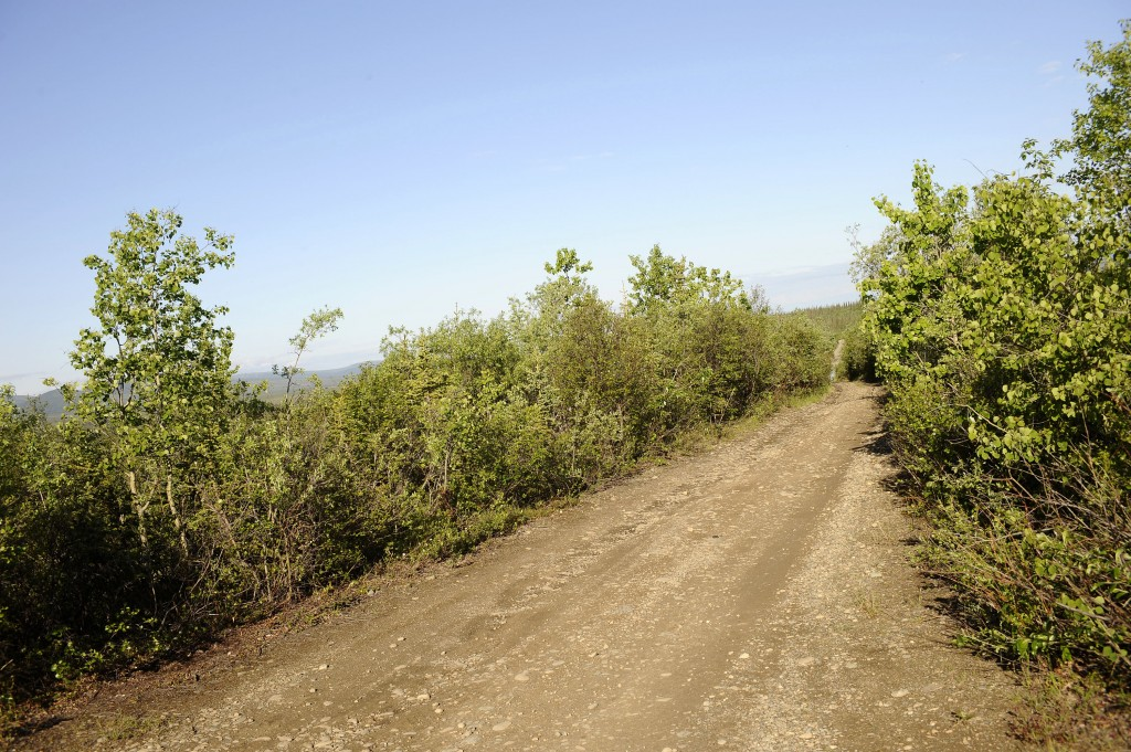 FILE - In this June 20, 2008, file photo, the Stampede Road becomes a narrow, rutted four-wheel drive trail after eight miles from its intersection wi...