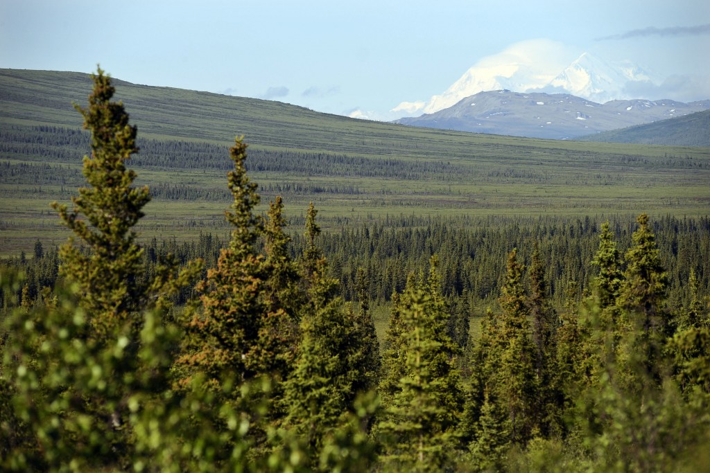FILE - In this June 20, 2008, file photo, a view extends into Denali National Park and preserve from the end of the pavement on the Stampede Road in H...