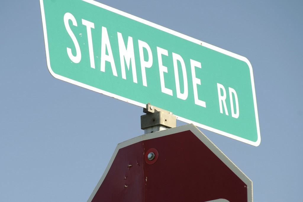 FILE - In this June 20, 2008, file photo, the road sign for Stampede Road is seen in Healy, Alaska. For more than a quarter-century, the old bus aband...