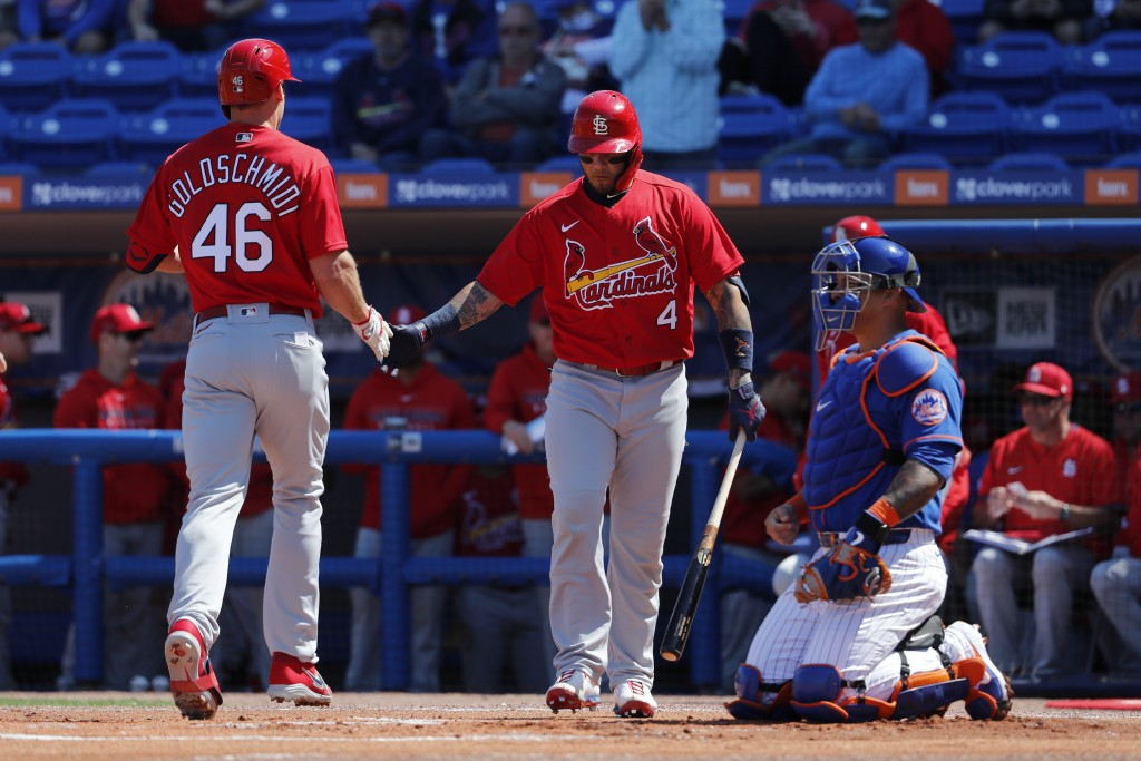 St. Louis Cardinals' Paul Goldschmidt (46) is congratulated by teammate Yadier Molina (4) after hitting a solo home run as New York Mets catcher Wilso...