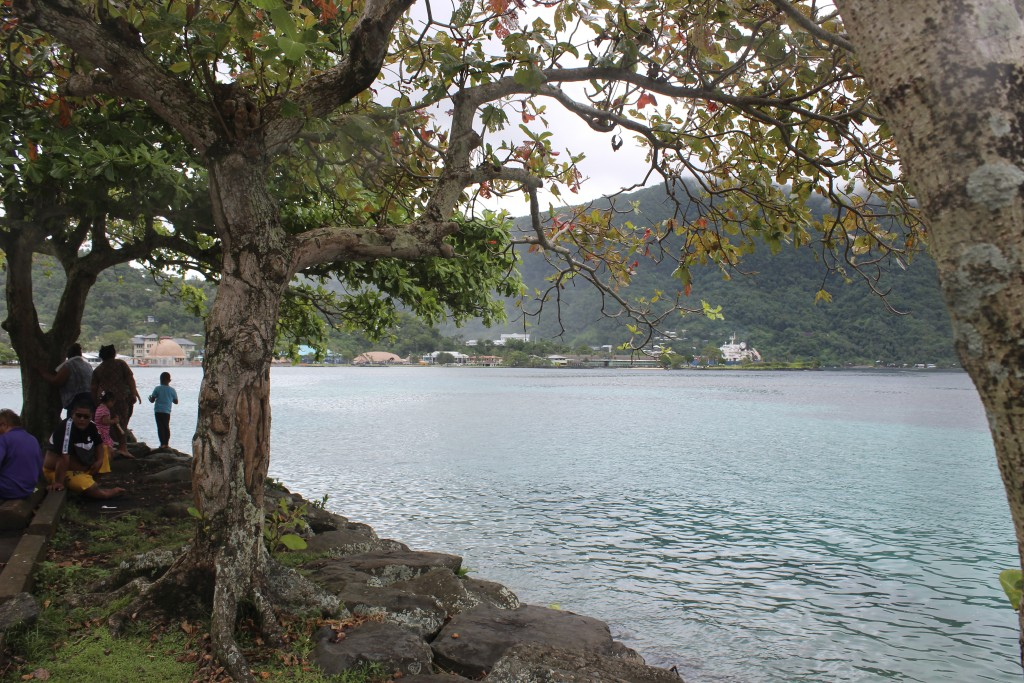 This photo shows people at Utulei Beach Park in Pago Pago, American Samoa on Wednesday, March 4, 2020. Mike Bloomberg spent more than $500 million to ...