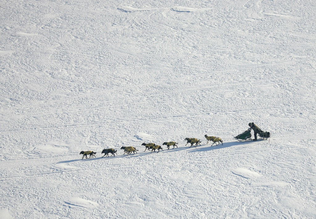 FILE - In this March 10, 2007 file photo Iditarod Trail Sled Dog Race front runner, four-time Iditarod champion Jeff King of Denali Park, Alaska, driv...